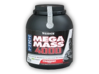 Giant Mega Mass 4000 3000g