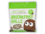 Breakfast Protein Balls 45g apple + blueberry