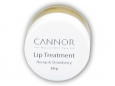 Balzám na rty lip treatment 10g